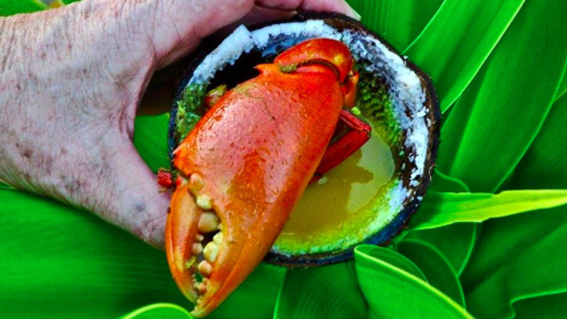 Crab Catching tour 1.jpg