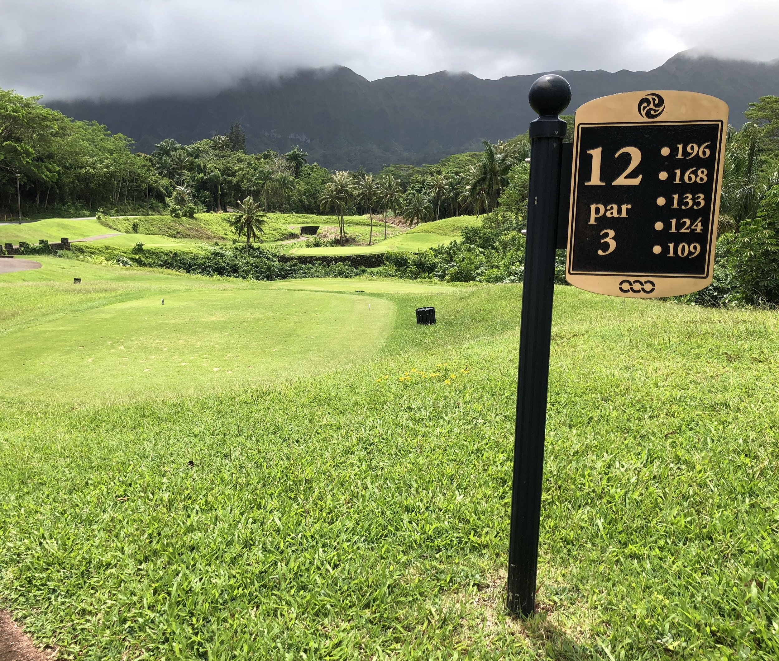 Royal Hawaiian par 3