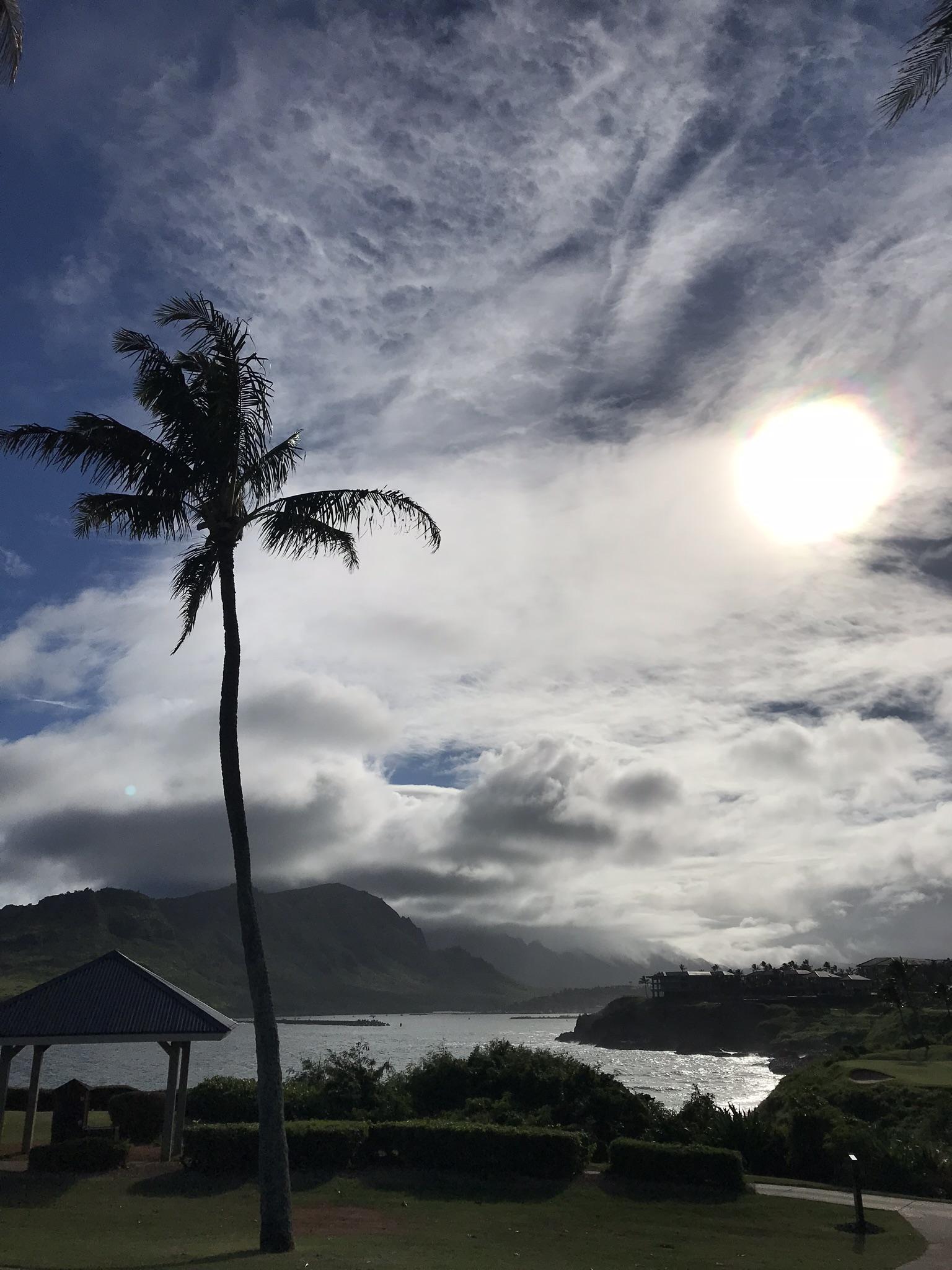 Stunning Hokuala golf