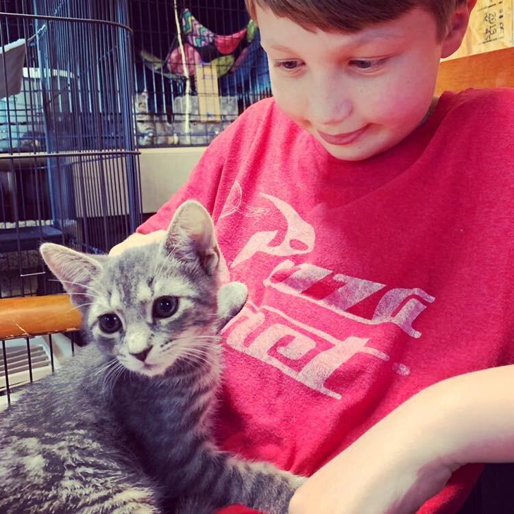 Grayson Adopted September 2019