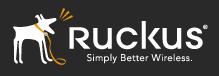 Ruckus Wirless Logo