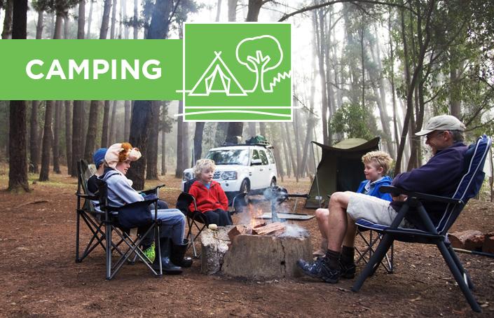 Camping_new.jpg