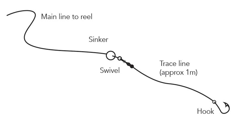 Sinker_line.jpg