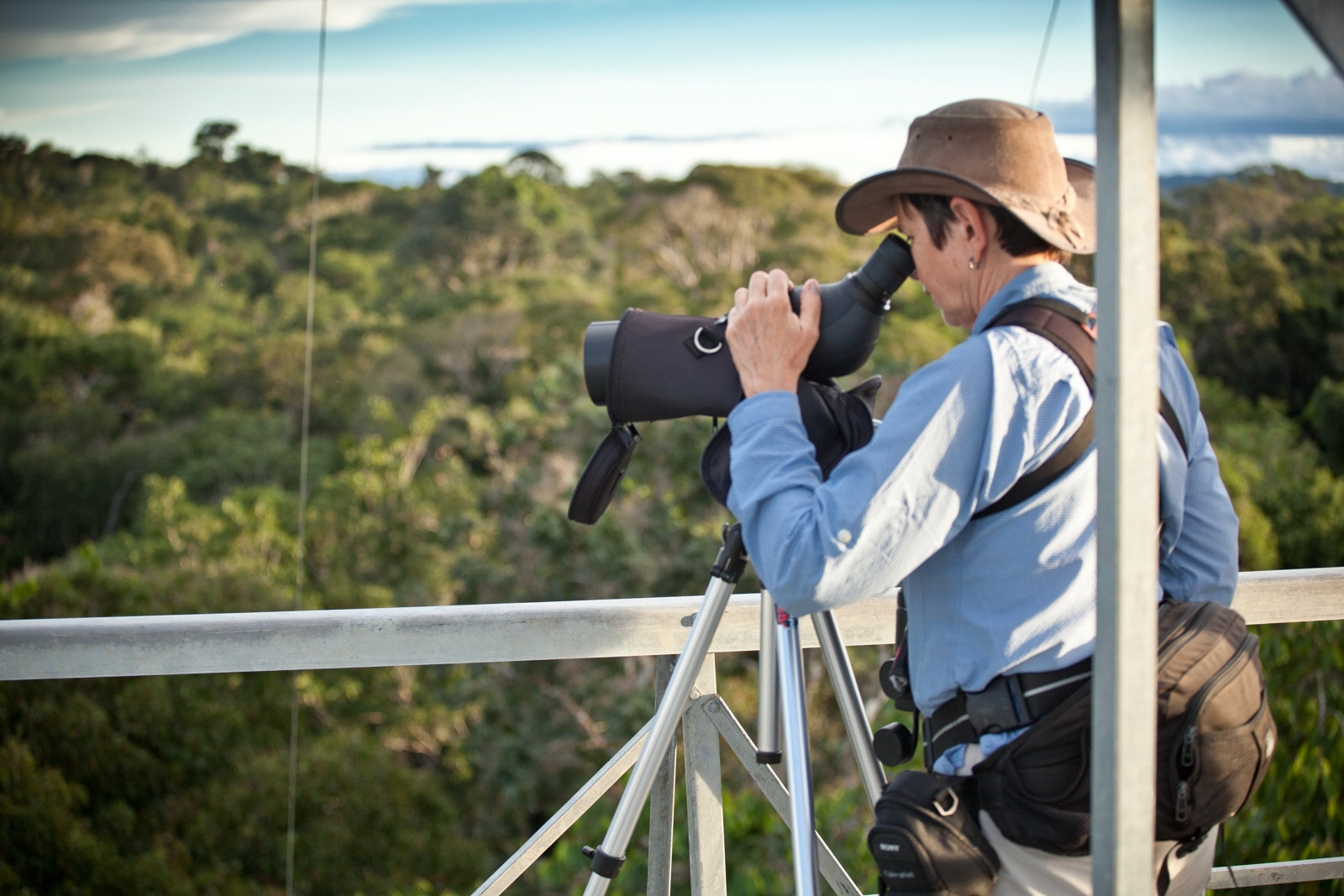 CL-Tourist watching wildlife at canopy tower-Samuel Melim.jpg