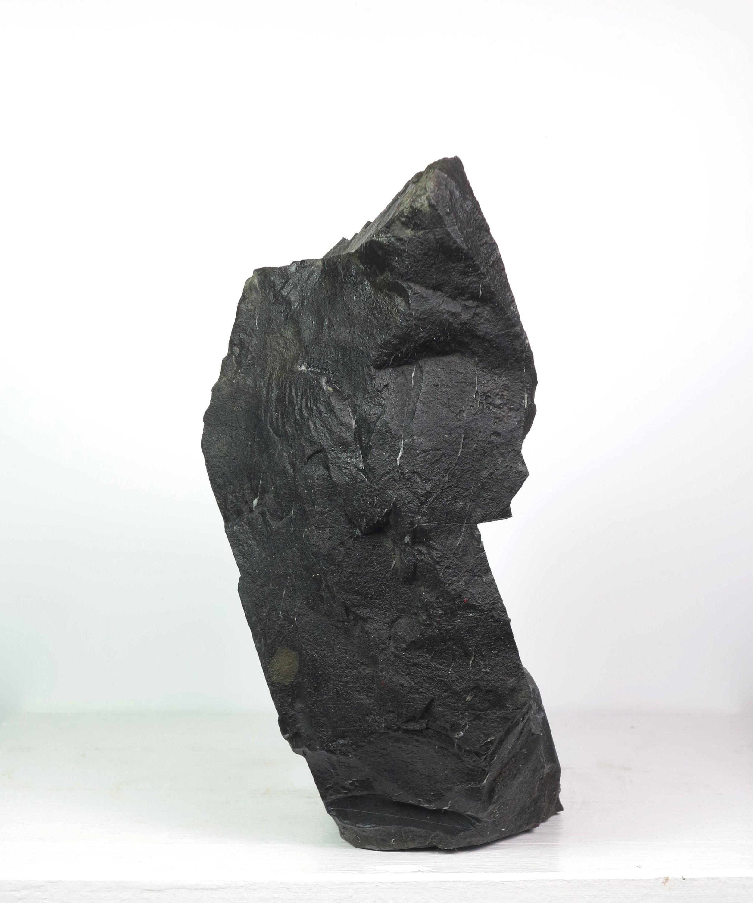 Black Hole VI 5.JPG