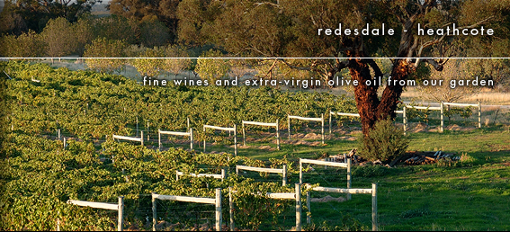 Stoneaxe vineyard.jpg
