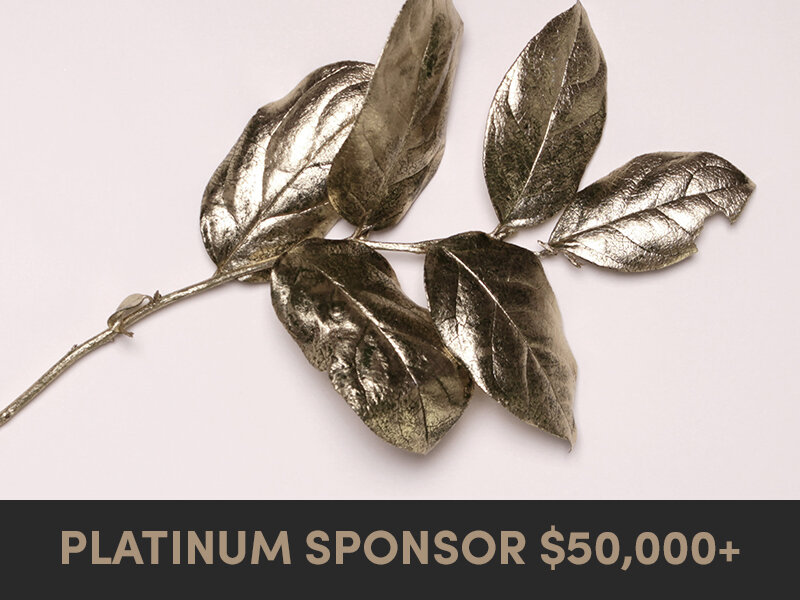 become-a-covert-sponsor-platinum.jpg