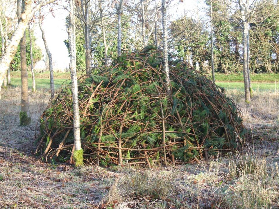 mound structure
