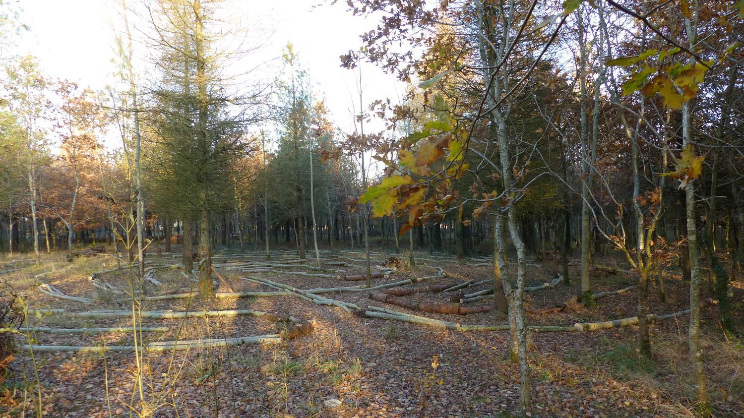 Using logs to layout the labyrinth