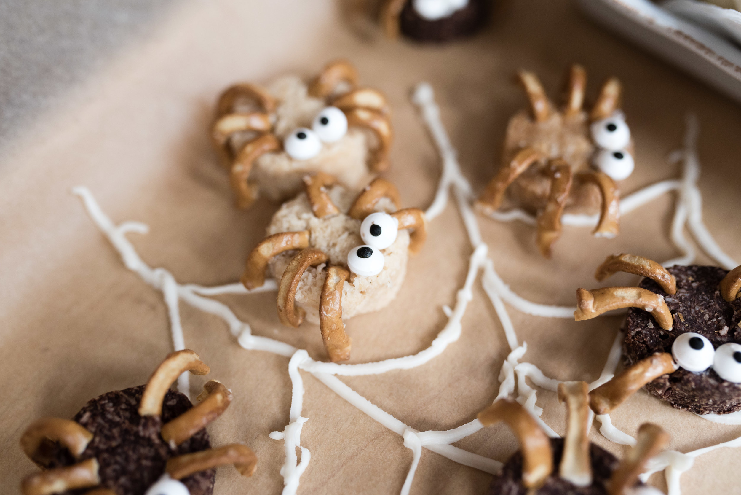 Spider Snacks-5.jpg