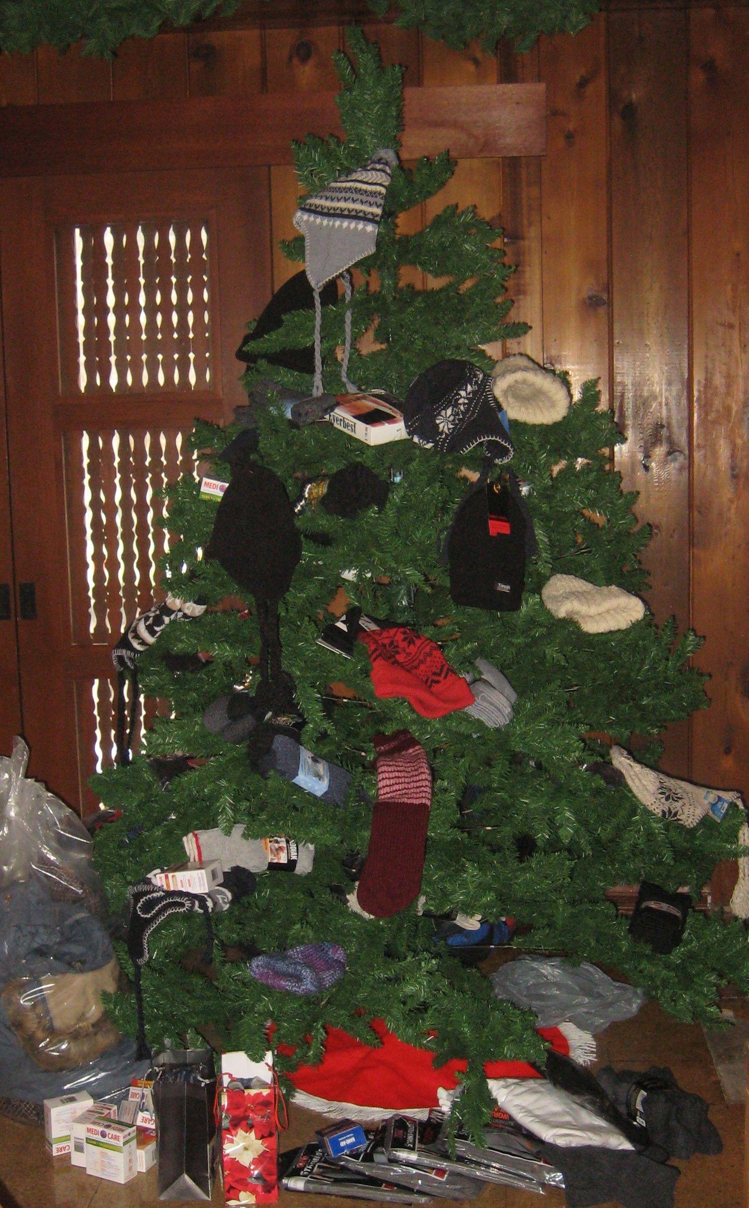 St Michael's Mission Tree