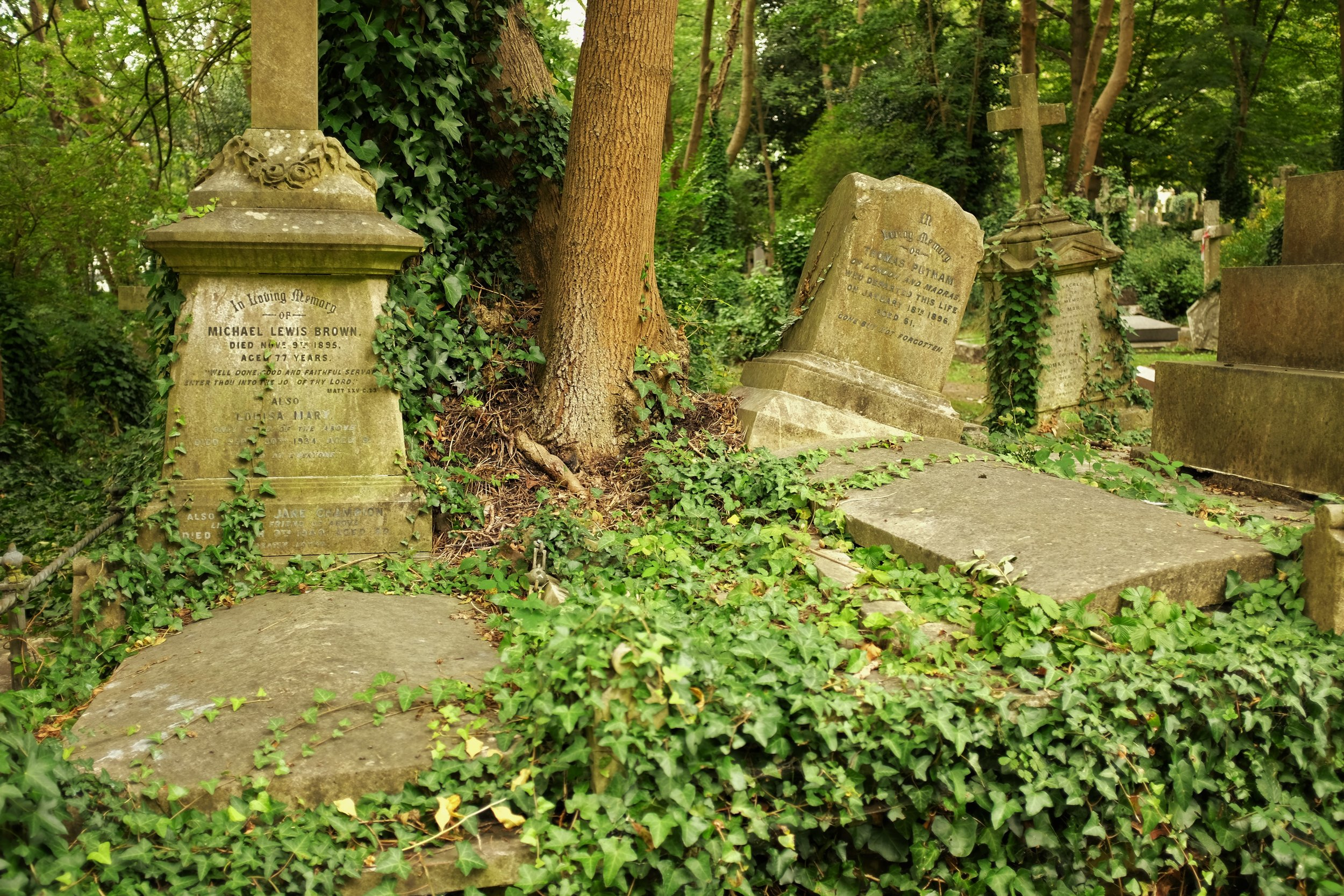 Graves and Greenery: London's Highgate Cemetery - Gallery