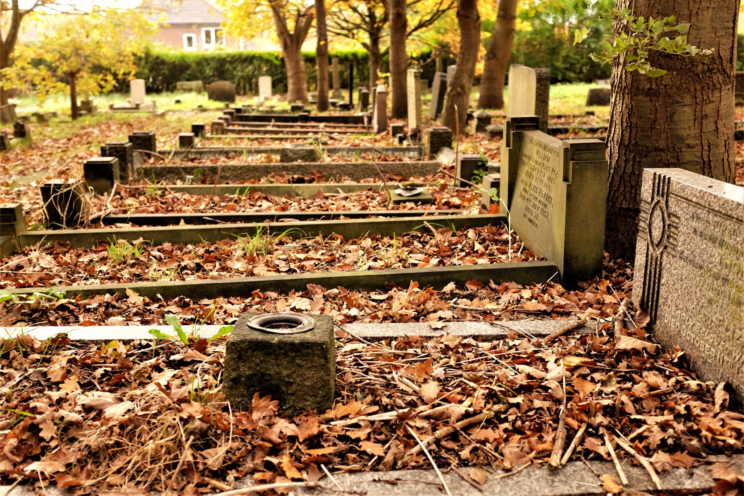 """""""Curb set"""" graves, like those seen above, can cost ₤9k-10k today."""