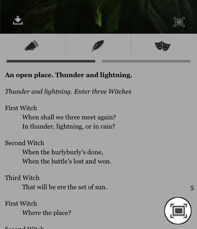 Fullscreen text buttom.png
