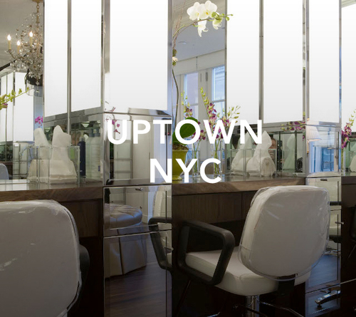 SH_Salon_Uptown_NYC.jpeg