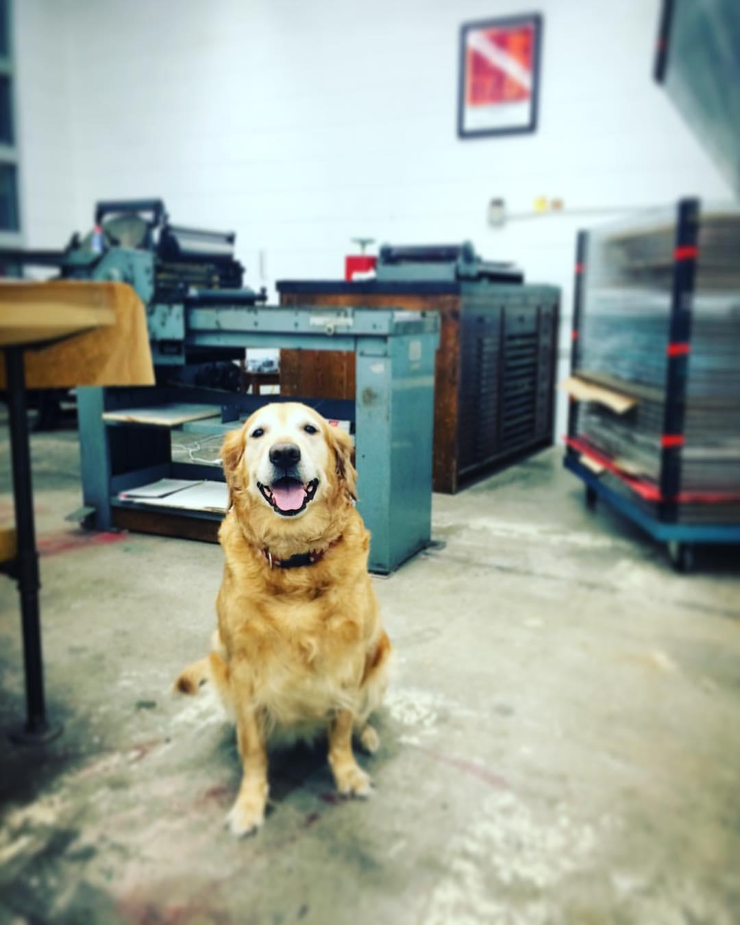 best print shop assistant, Bettie Bee.