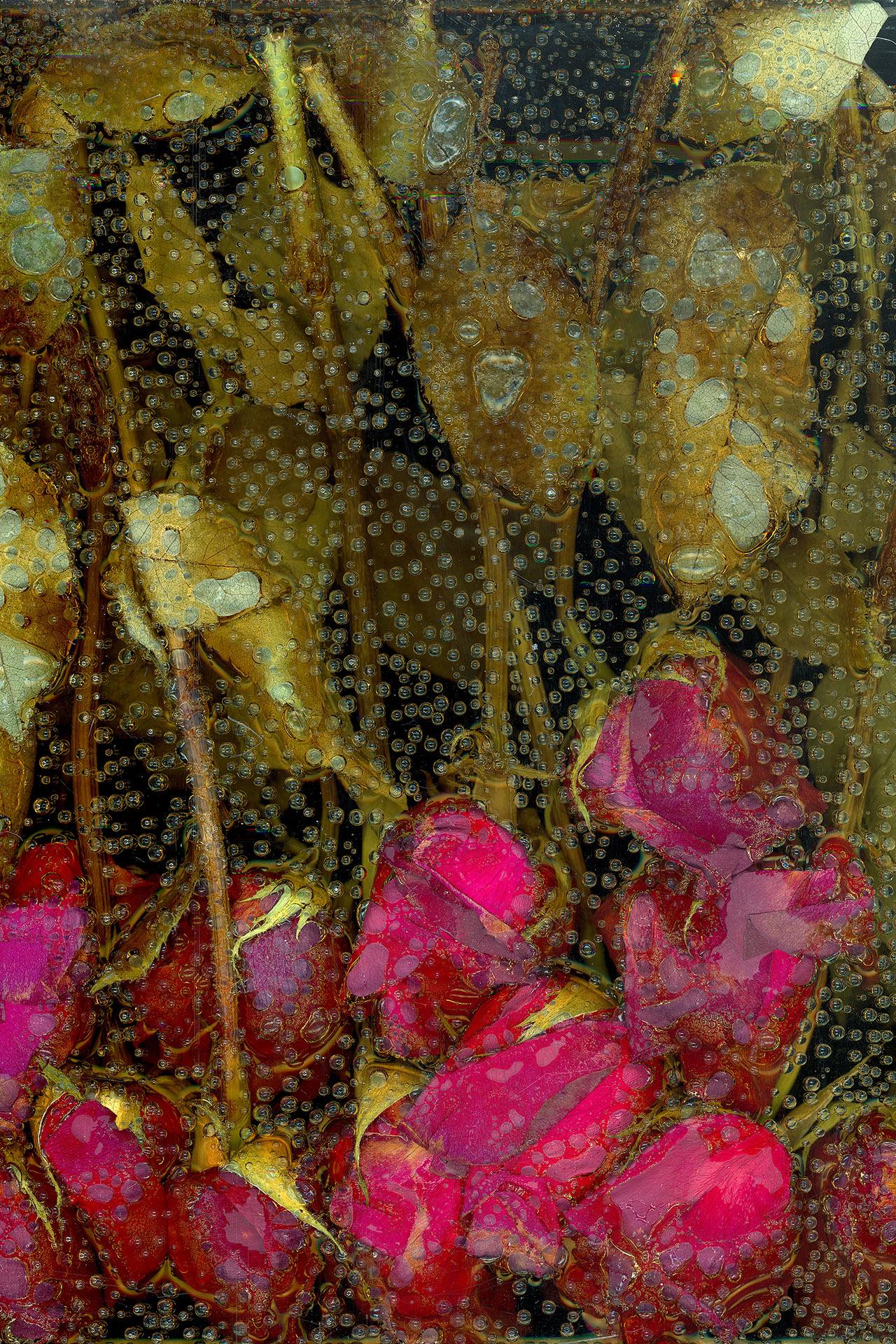 victoria marie bee,  la petite mort ,2016  [click on image for fullscreen]