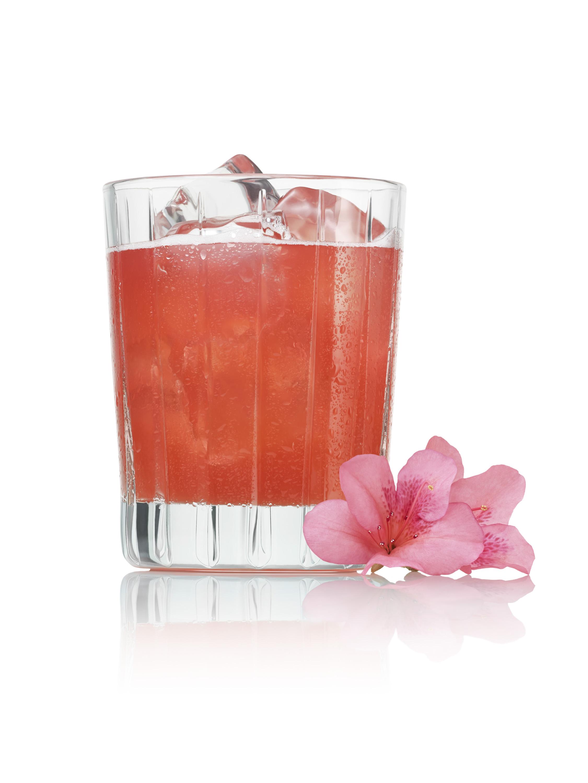 PATRON_Cocktail_Azalea_Margarita_TEST_213_RGB copy.jpg