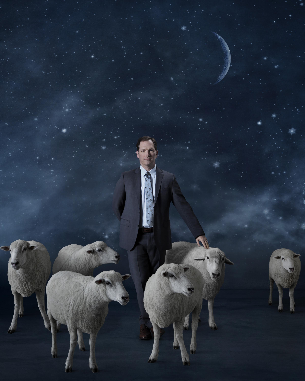 AC sheep surround v4_RGB.jpg