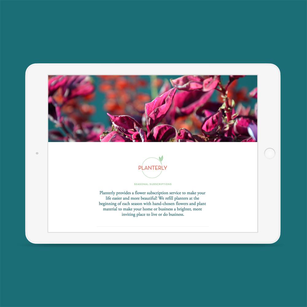 Planterly_Steadfast_Design_Studio_website.jpg