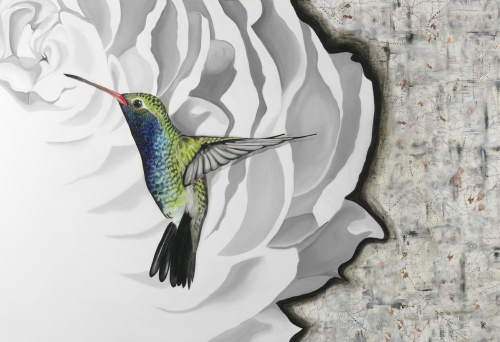 Hummingbird13x19SatinPaper50.16x24Canvas399.jpg
