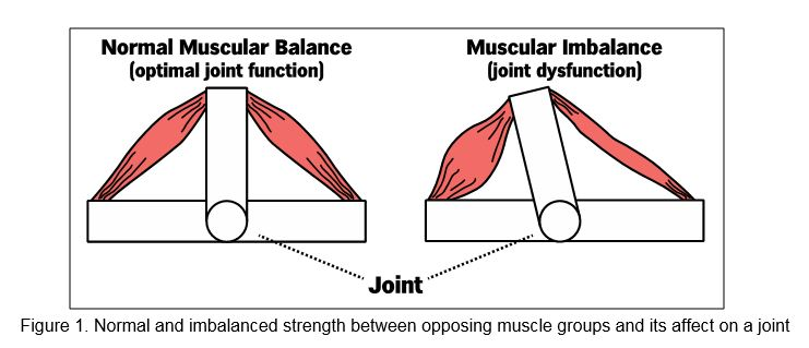 Figure 1: Notice the difference between normal and imbalanced strength and its impact on a joint.