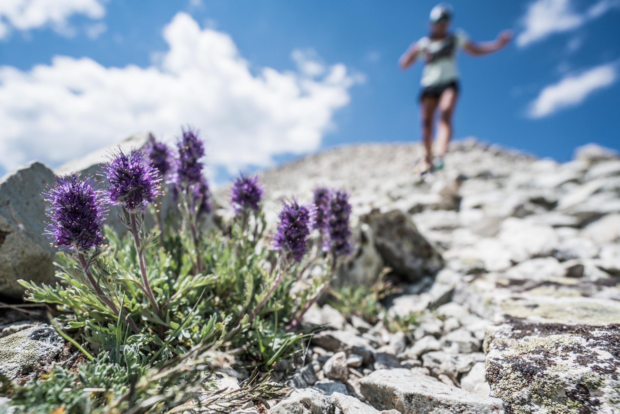 Flower Running