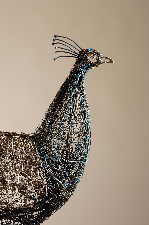 Peacock (detail)
