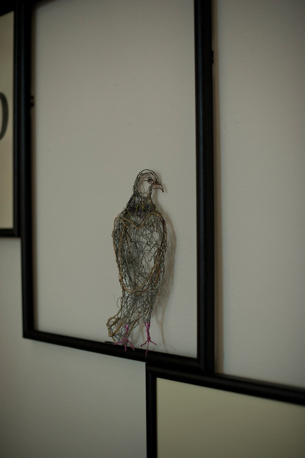 The Feathered Aviator Exhibition New Brewery Arts Cirencester July 2014