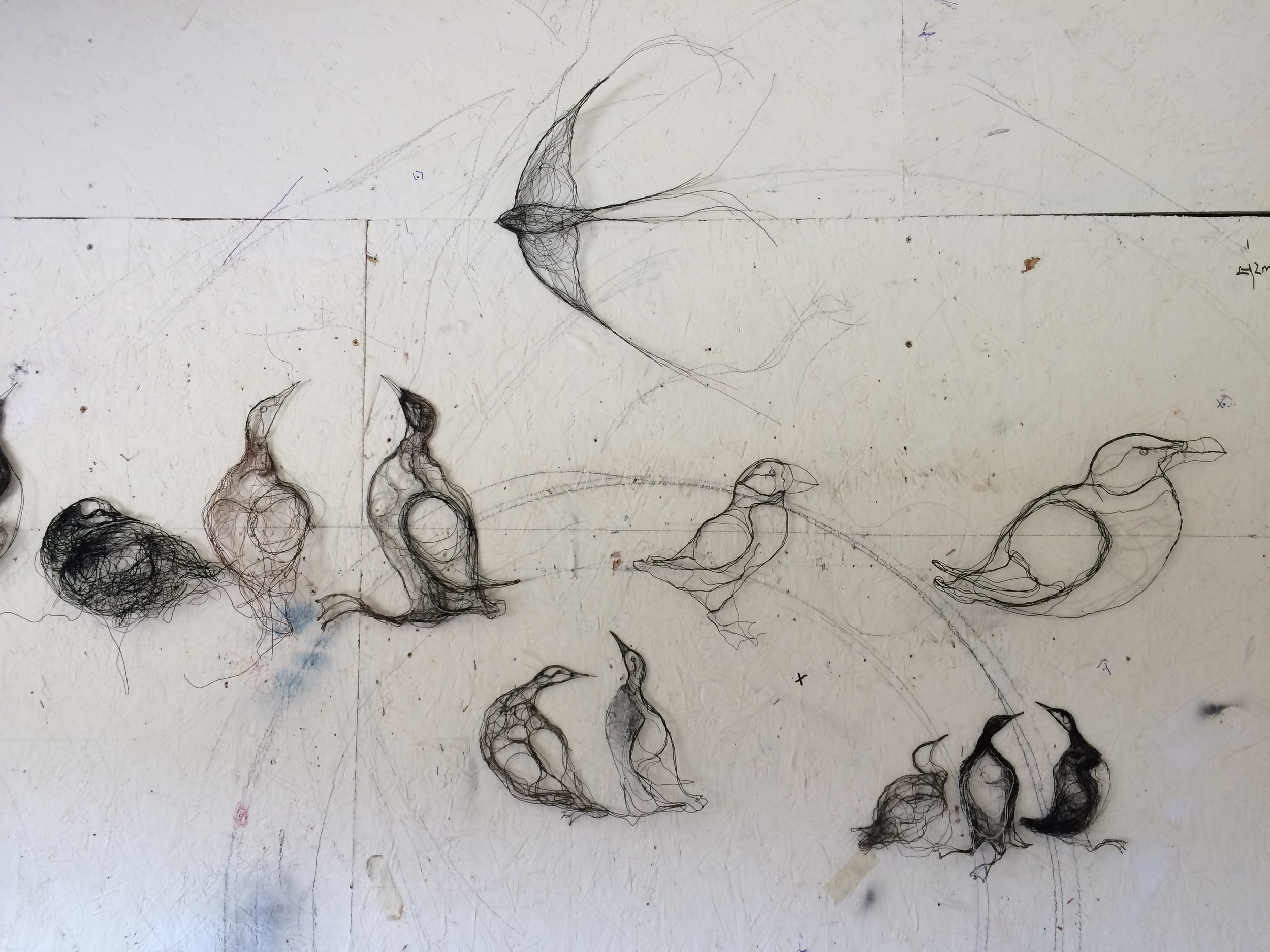 A selection of wire wall drawings made while on the island.