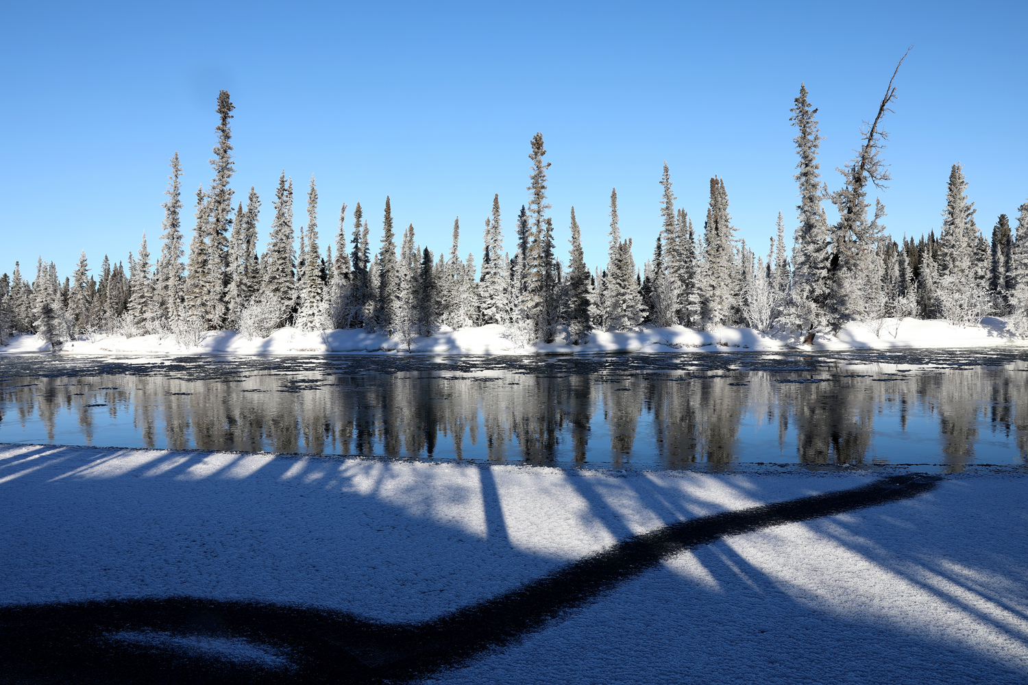 The Black Line Project, Clearwater River, Alaska