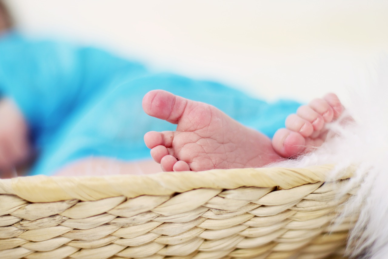 paternity parentage family lawyer long beach orange county los angeles