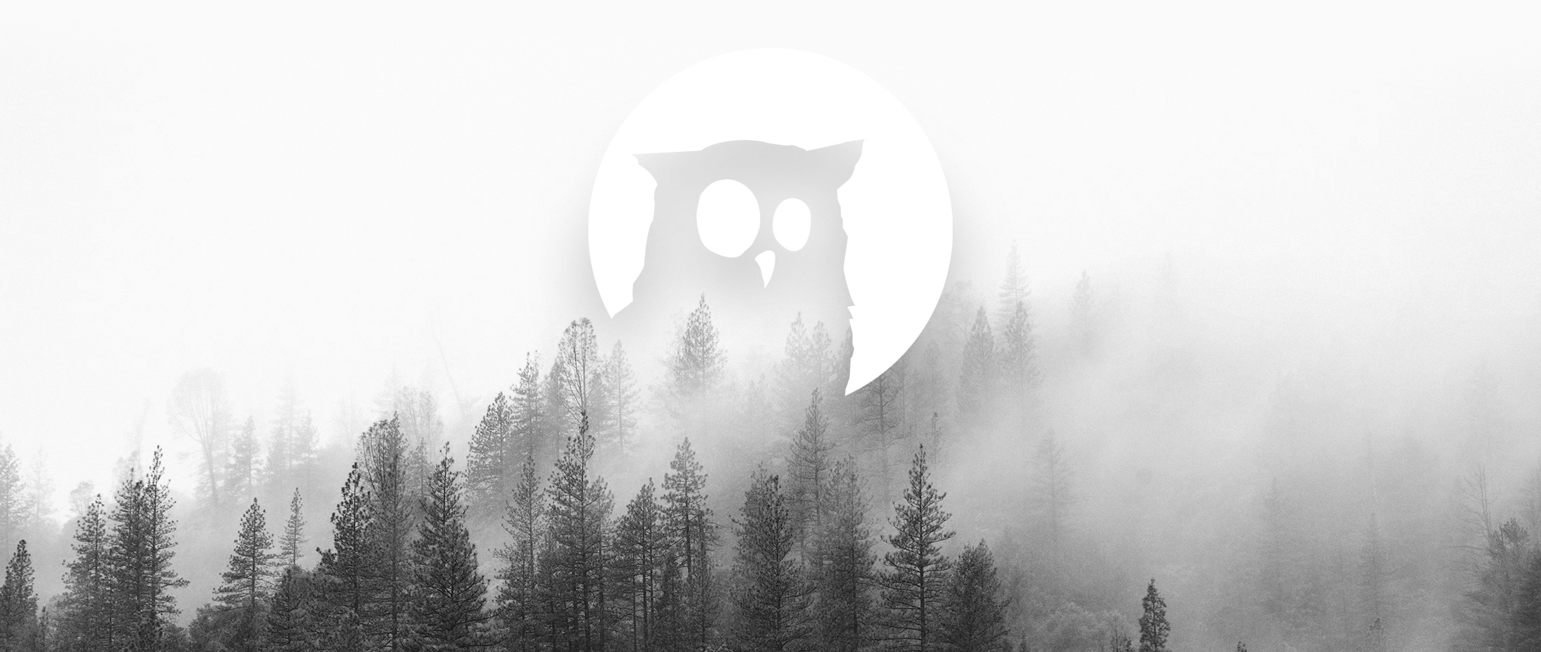 owl_header.jpg
