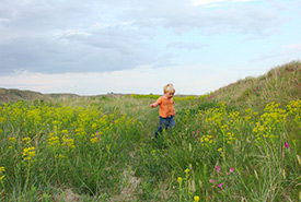 Duke Pezderic in a field of Leafy Spurge (Photo by Leta Pezderic)