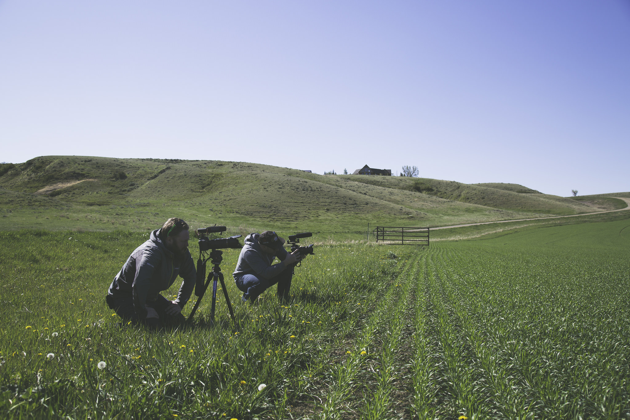 The Film Project -