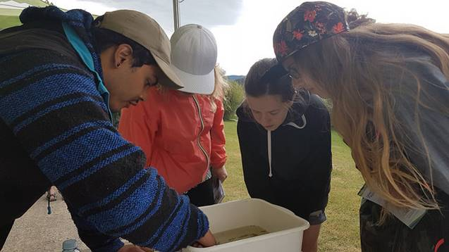 Francisco teaching kids about aquatic invertebrates at Parks Day ( More photos here )