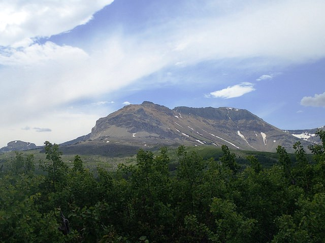 Sofa Mountain, southeast of the Waterton townsite, was burned by a similarly hot  fire in 1998 . The area is showing slow signs of recovery because the soil was scorched away by the heat of the fire, leaving little for re-establishing plants to hold on to but bare, infertile rock.