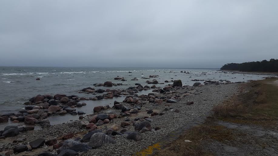 Põõsaspea rahutu meri
