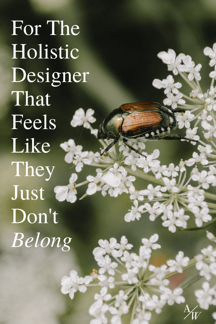 bettle on plant, text: holistic designer doesn't feel like they belong