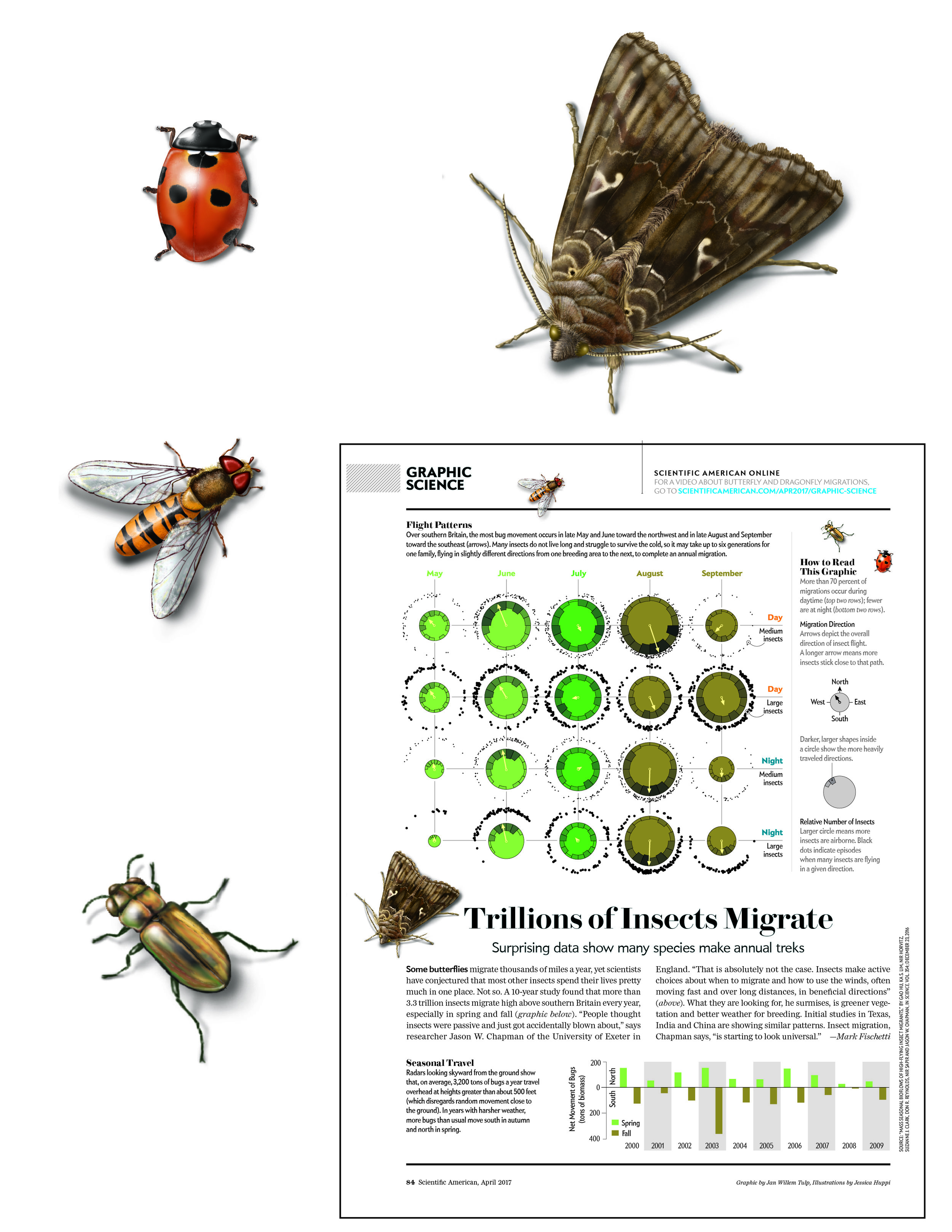 """Tillions of Insects Migrate"""