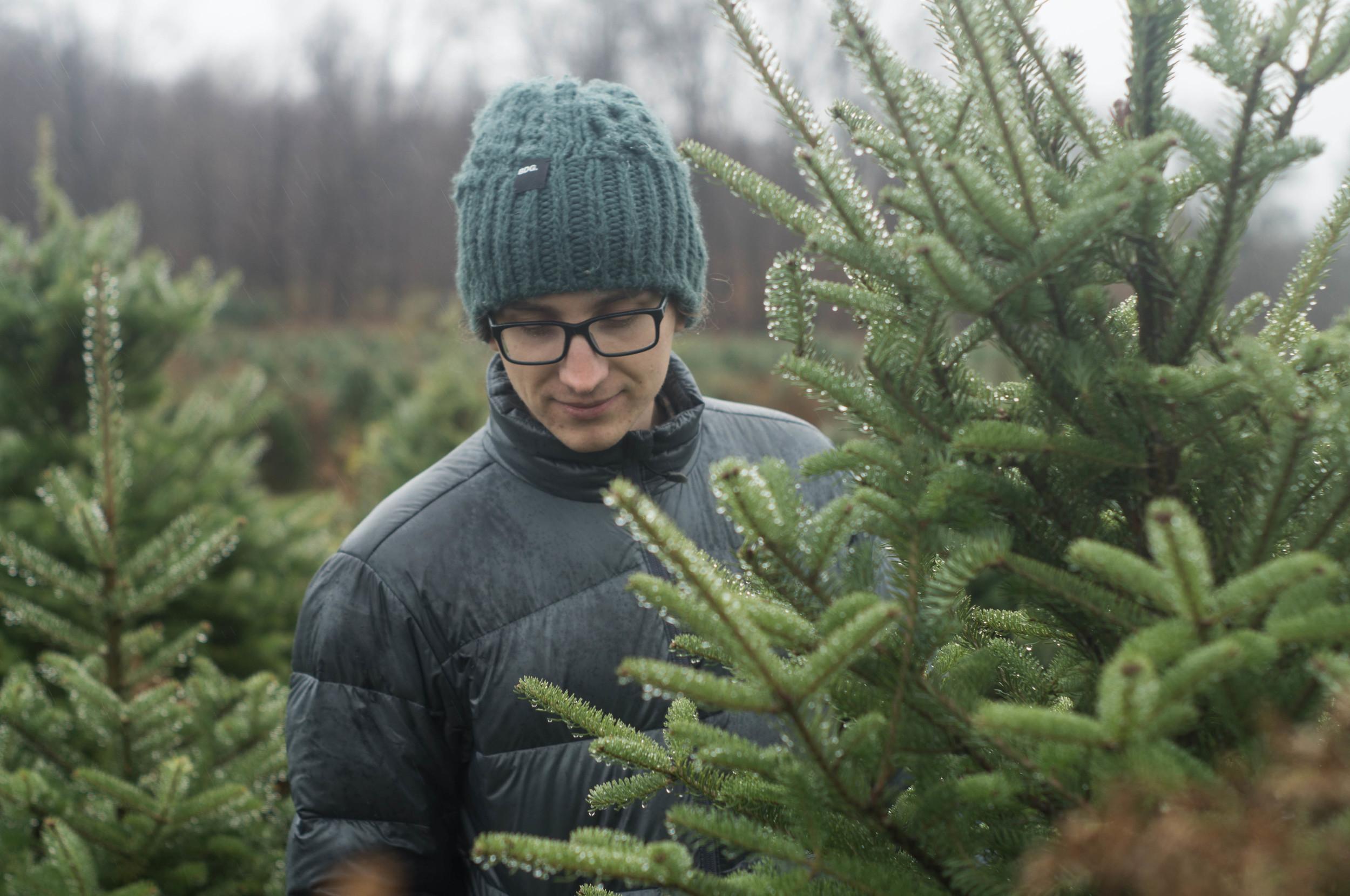 mark-amid-fir-trees
