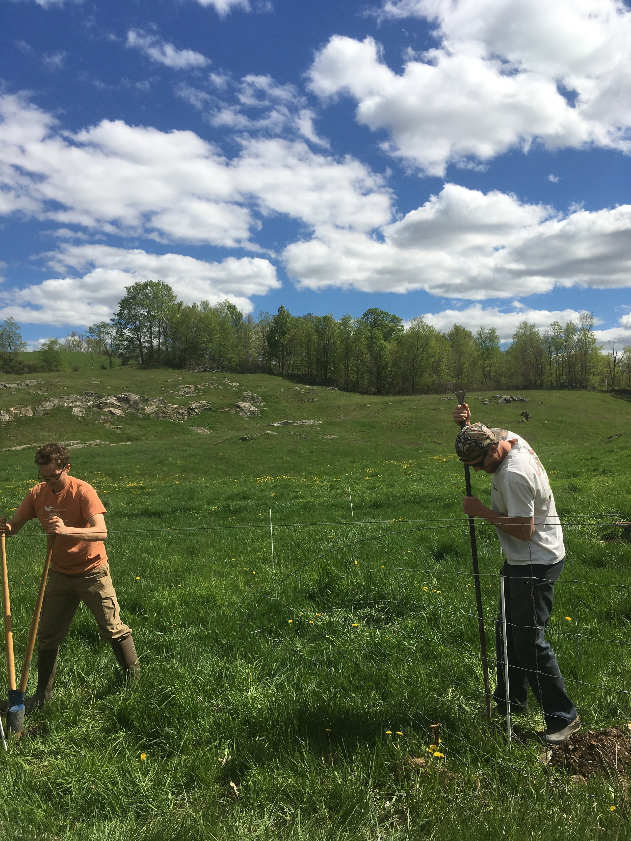 mark digging fence posts