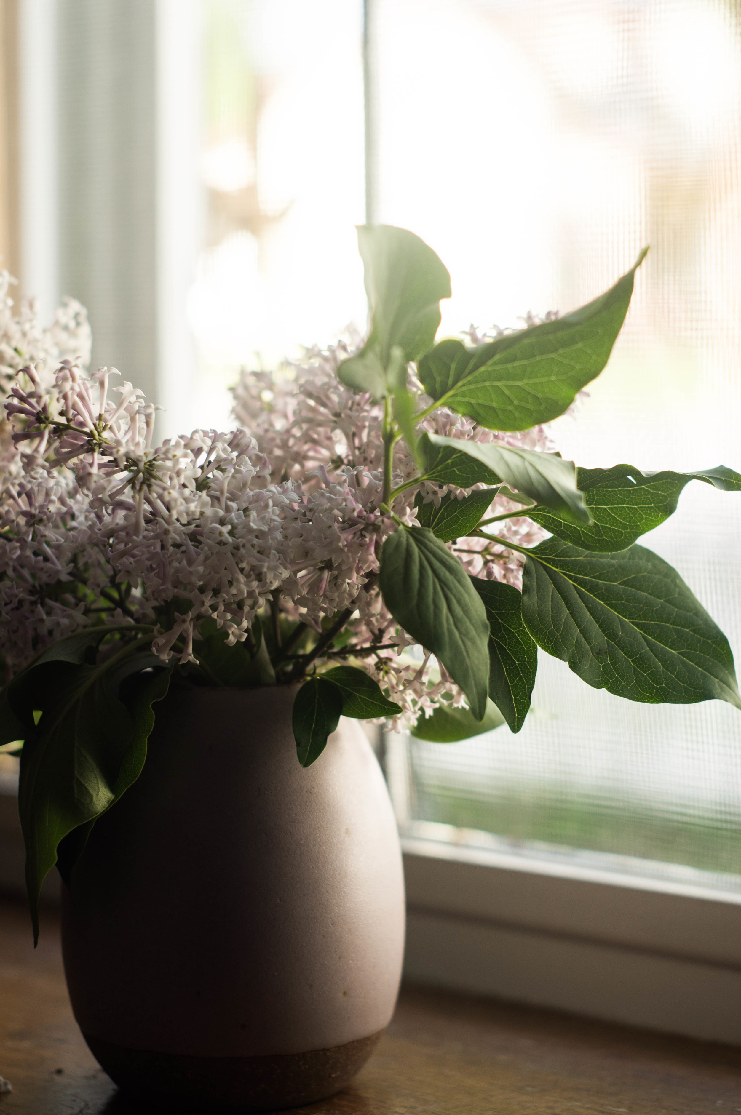 fresh lilacs in a lilac ceramic vase by samantha spigos