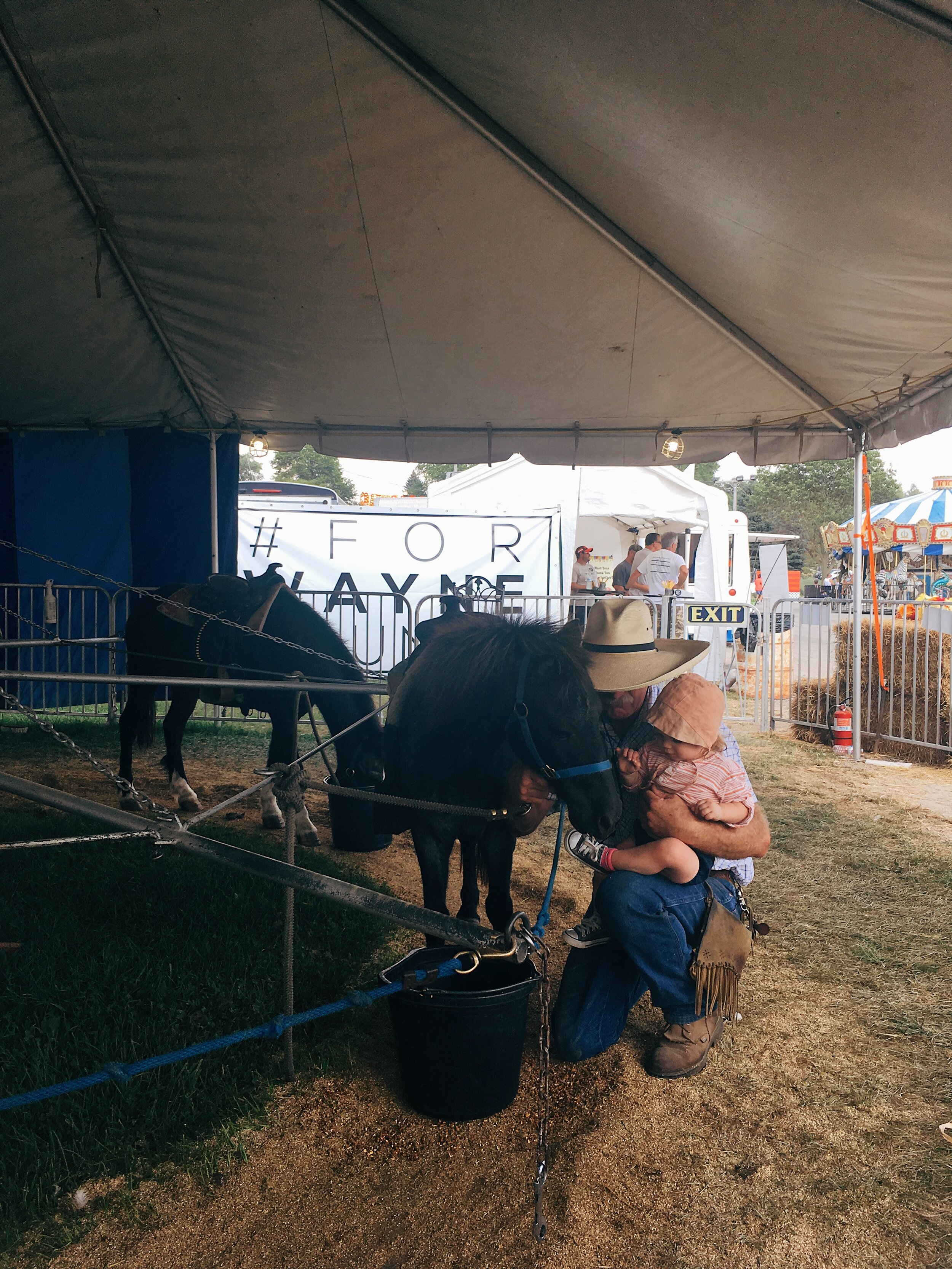 small town county fair by samantha spigos