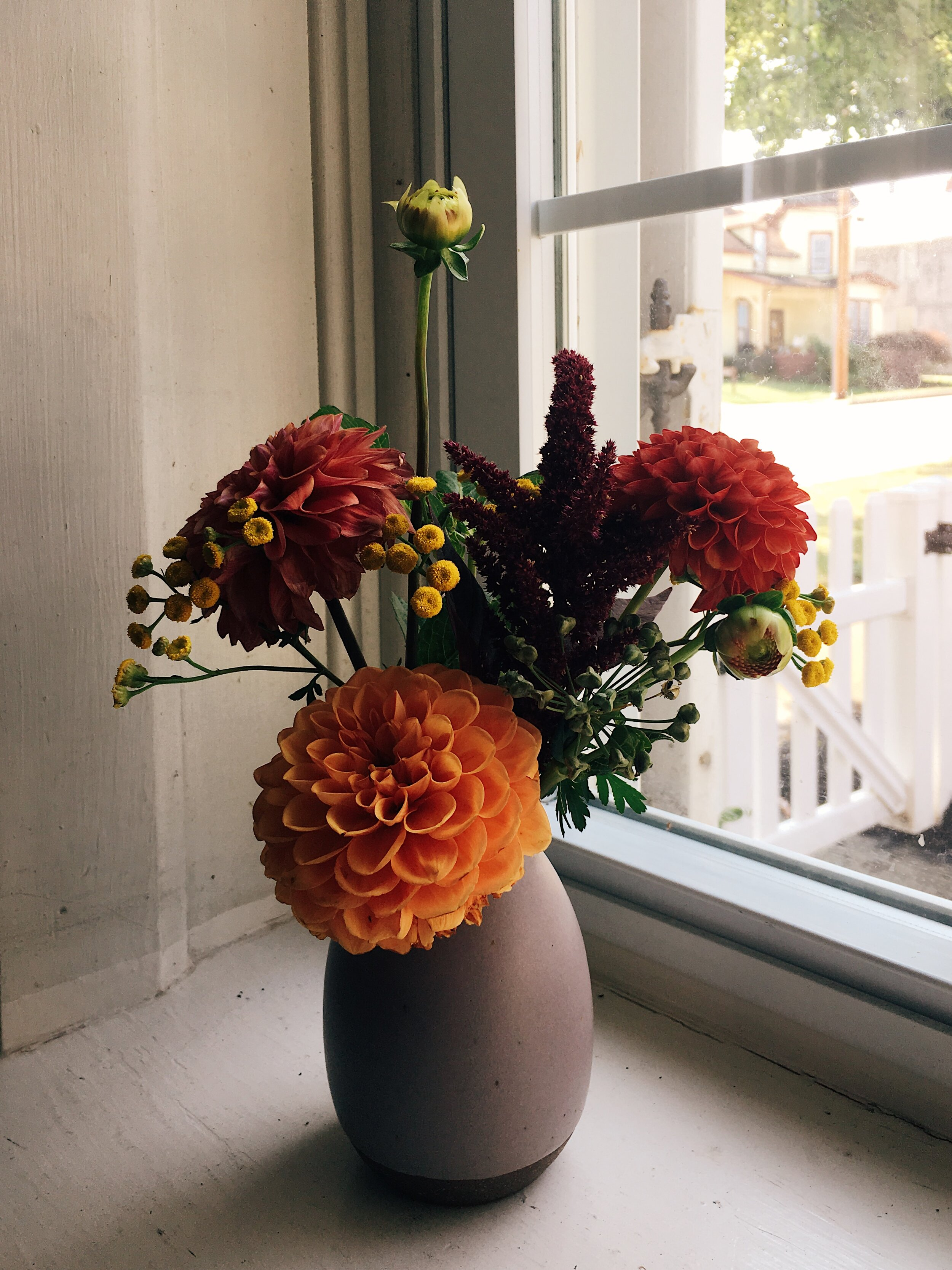 seasonal bouquet of local flowers in a vase by samantha spigos