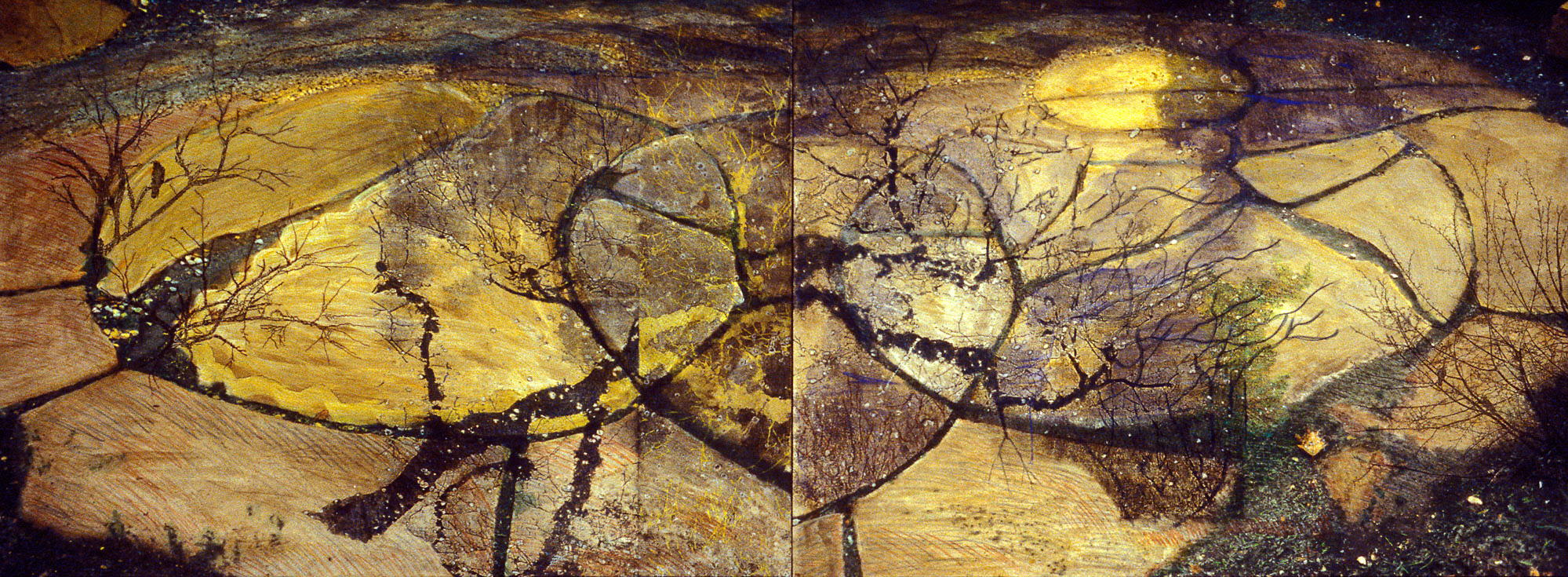 Parting of the Plates , 2008, 8 x 30 x 2""
