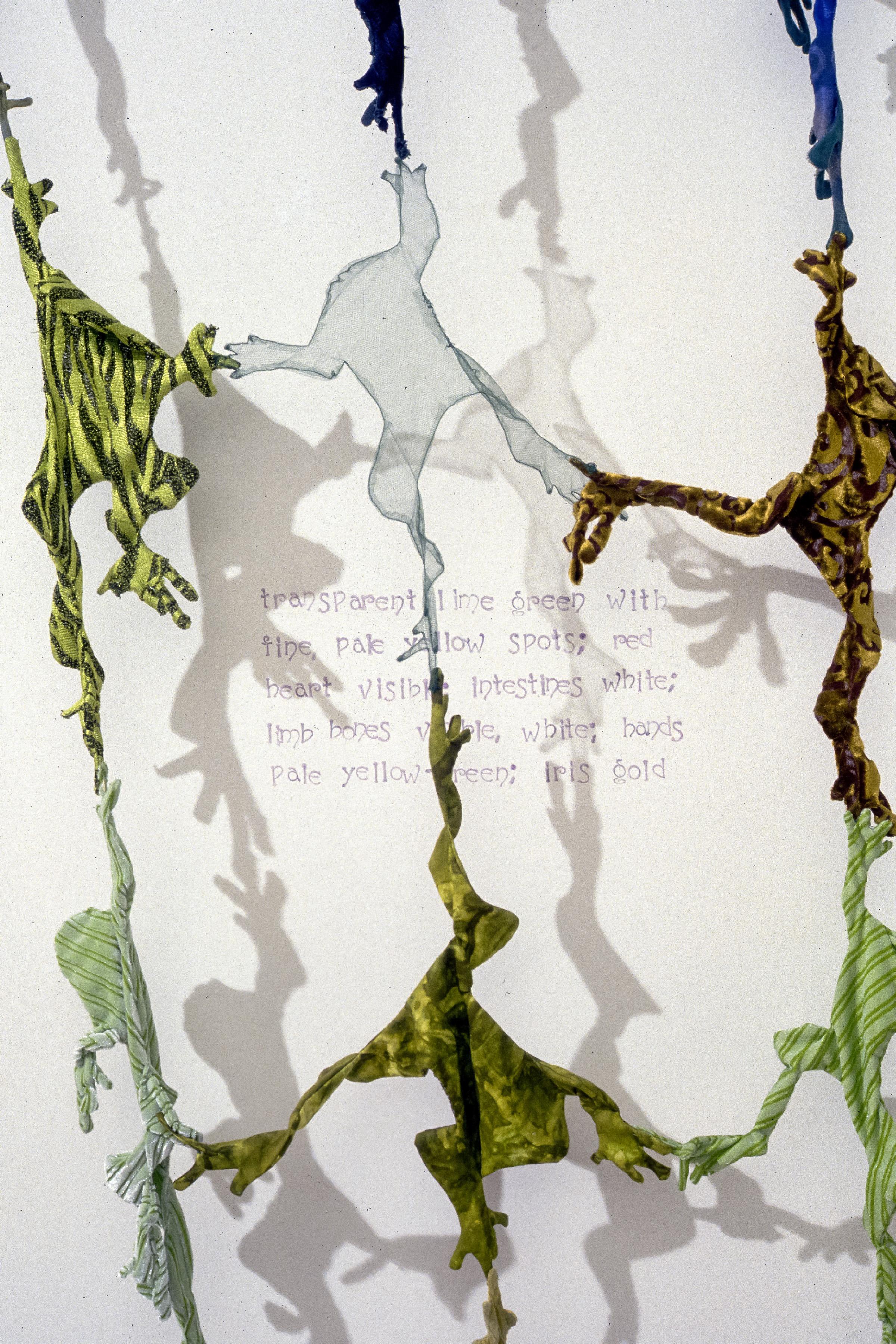 Frog Web #2   fabric, thread, graphite on wall