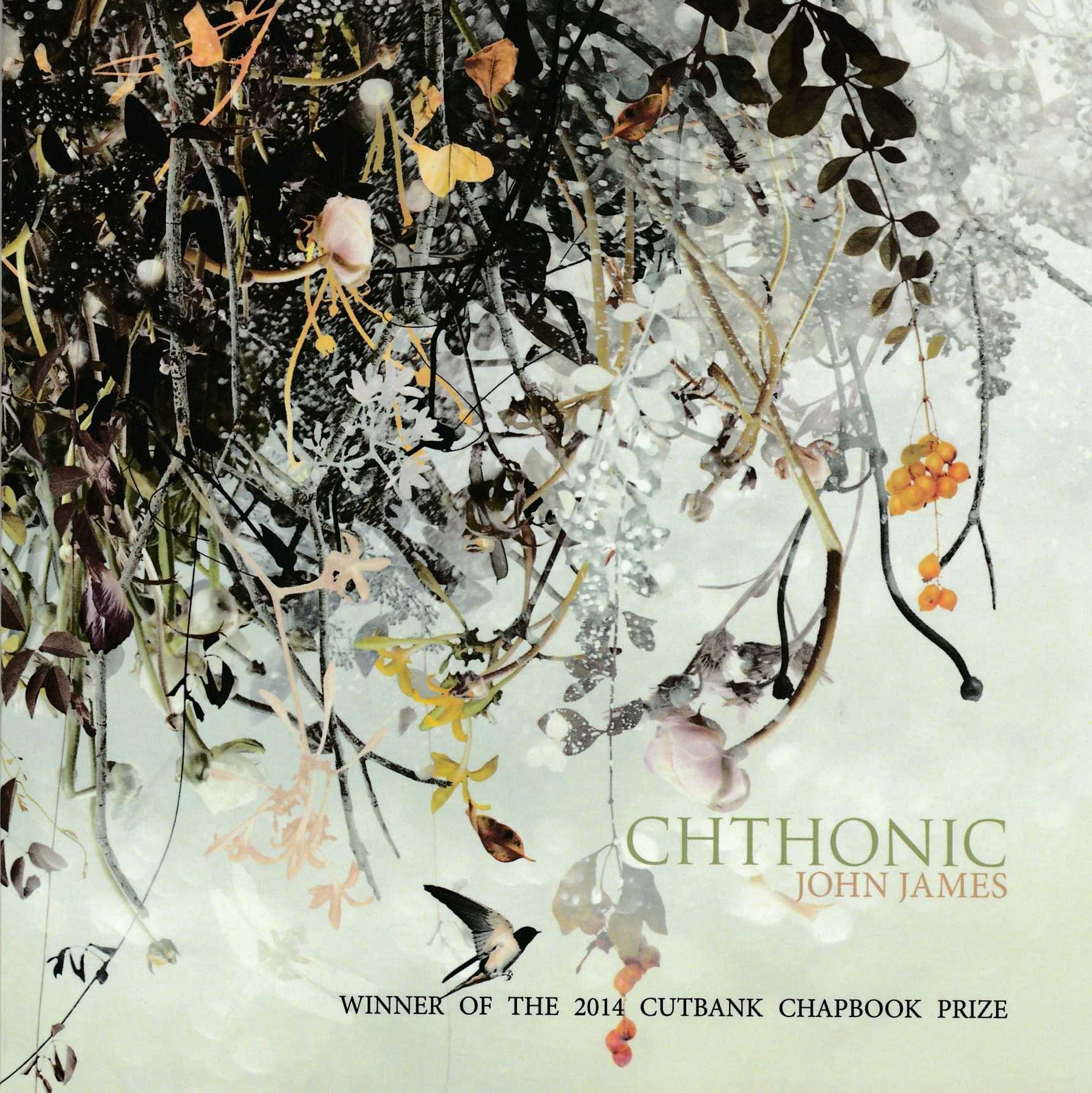 cthonic cover_0001.jpg