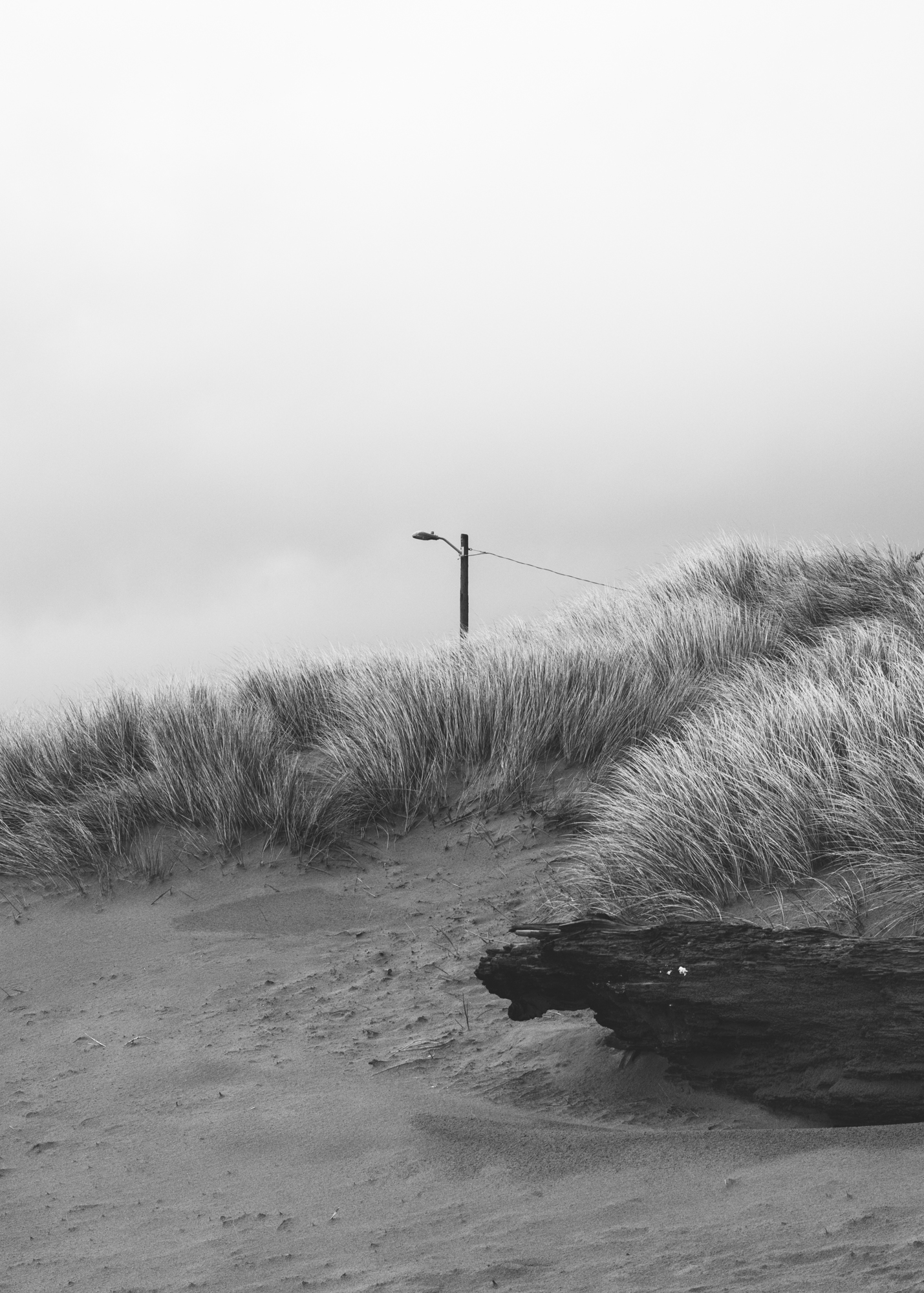 blackandwhite-13.jpg
