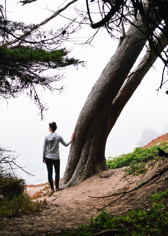 angandtree-1.jpg